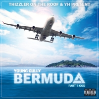 Young Gully - Bermuda, Part 1 2015