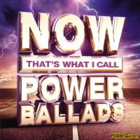 Now That's What I Call Power Ballads 爱情力量 (2015) 3 CD