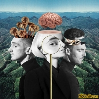 Clean Bandit – What Is Love? (Deluxe) – (iTunes Plus AAC M4A) (2018)