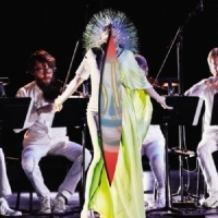 Bjork (Bj?rk)-Vulnicura Strings 2015