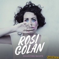 Rosi Golan - Collecting Bullets