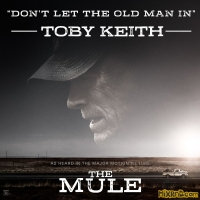 Toby Keith - Don't Let the Old Man In (2018)
